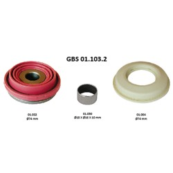 GBS 01.103.2 TAPPETS KIT