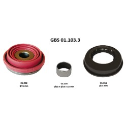 GBS 01.103.3 TAPPETS KIT