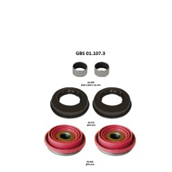 GBS 01.107.3 TAPPETS KIT