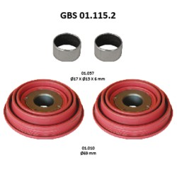 GBS 01.115.2 TAPPETS KIT