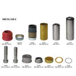 GBS 01.126.2 GUIDE & SEAL KIT