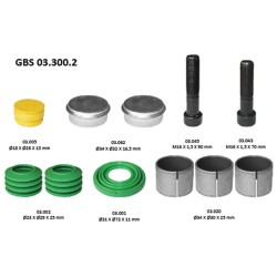 GBS 03.300.2 GUIDE BOLT & SEAL KIT