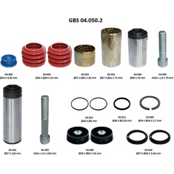 GBS 04.050.2 GUIDE & SEAL KIT
