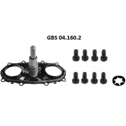GBS 04.160.2 CALIPER SETTING MECHANISM & COVER